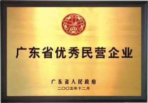 广东省优秀民营企业